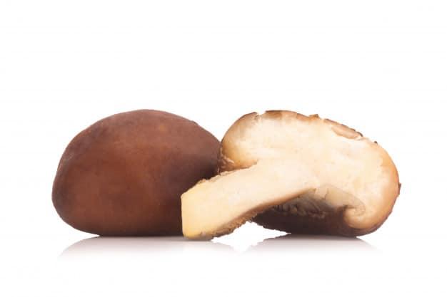 champignon shiitake fond blanc